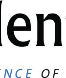 Logo_Talent_Plus_Lincoln_Nebraska