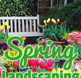 spring landscaping feature strictly business magazine lincoln nebraska