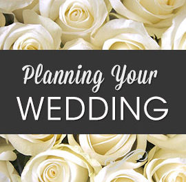 Photo_Planning_Your_Wedding_Strictly_Business_Lincoln_Nebraska