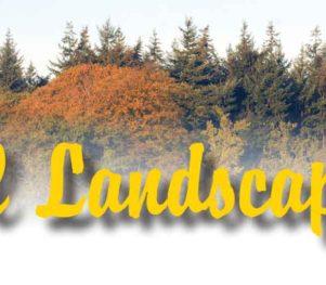 Header-Fall-Landscaping-Lincoln-Nebraska