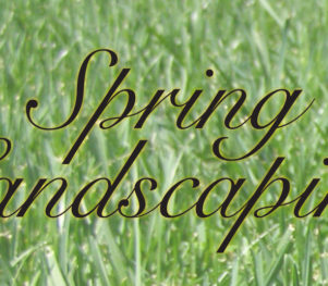 Header-Spring-Landscaping-Lincoln-NE
