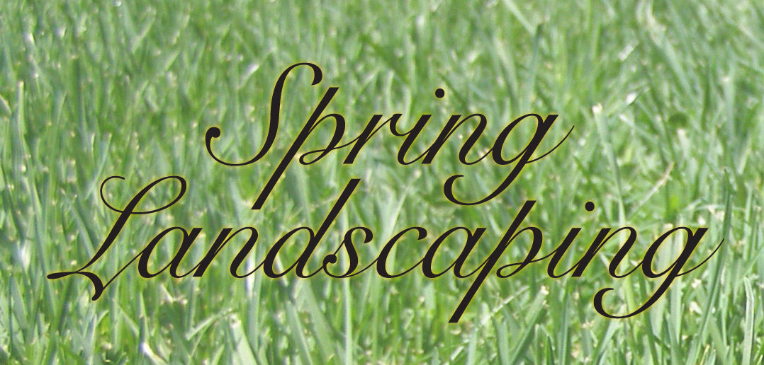 Spring Landscaping spring landscaping • strictly business magazine | lincoln
