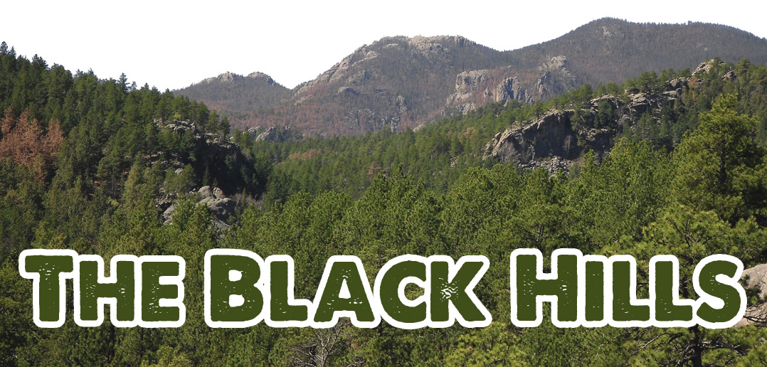 far hills black singles History of the black hills wind cave is considered sacred and culturally significant to the lakota and cheyenne, and throughout the centuries, many tribal nations lived and traveled within.