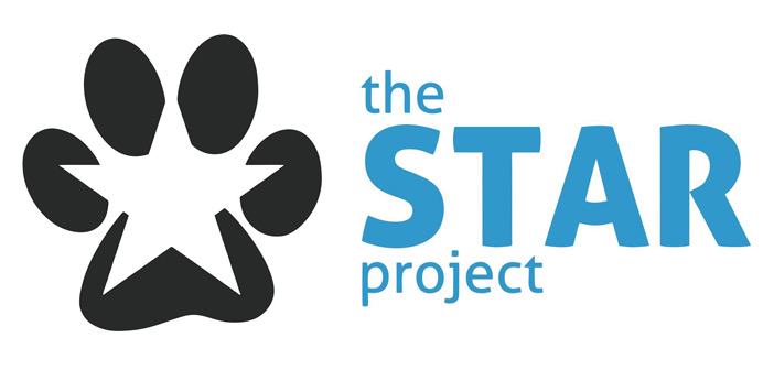the star project-logo
