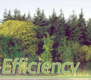 Eco-Efficiency in Lincoln, Nebraska