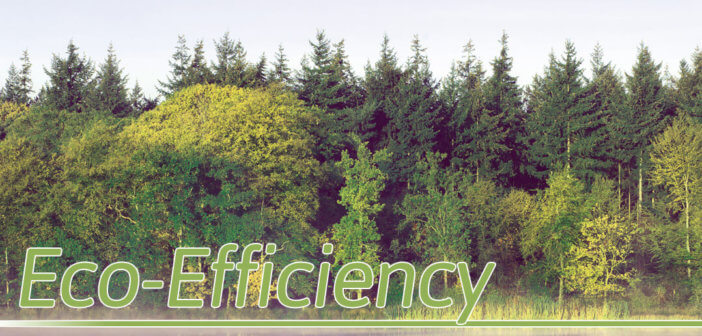 Eco-Efficiency in Lincoln, Nebraska