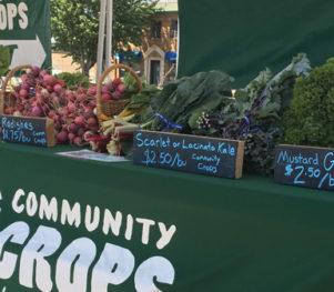Community Crops Veggie Van Setup