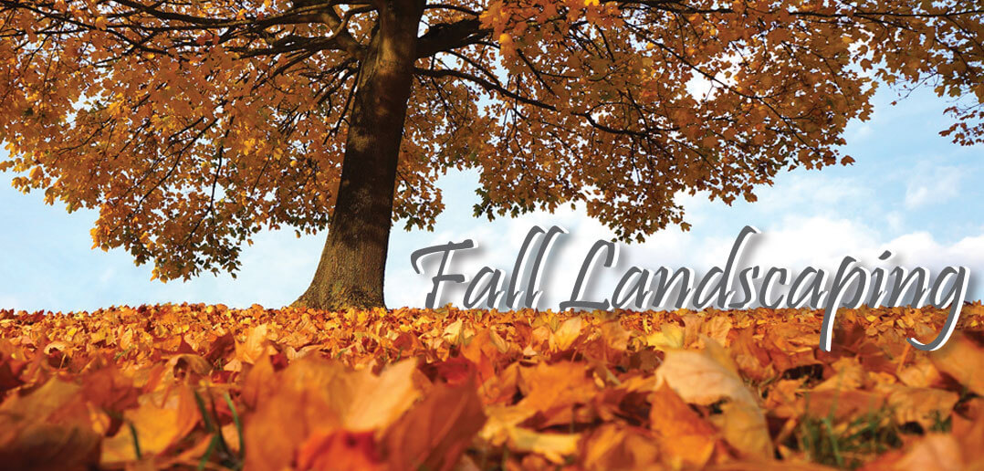 Fall Landscaping fall landscaping in lincoln - 2017 • strictly business magazine