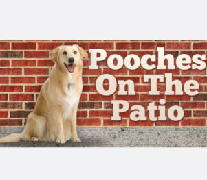 Pooches on the Patio - MoMo's Pizzeria & Ristorante