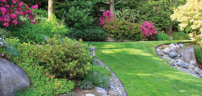 Ray S Lawn Amp Landscape A Family Owned Business At Its Roots