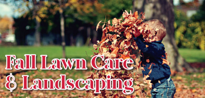 Fall Lawn Care & Landscaping in Lincoln, NE – 2019