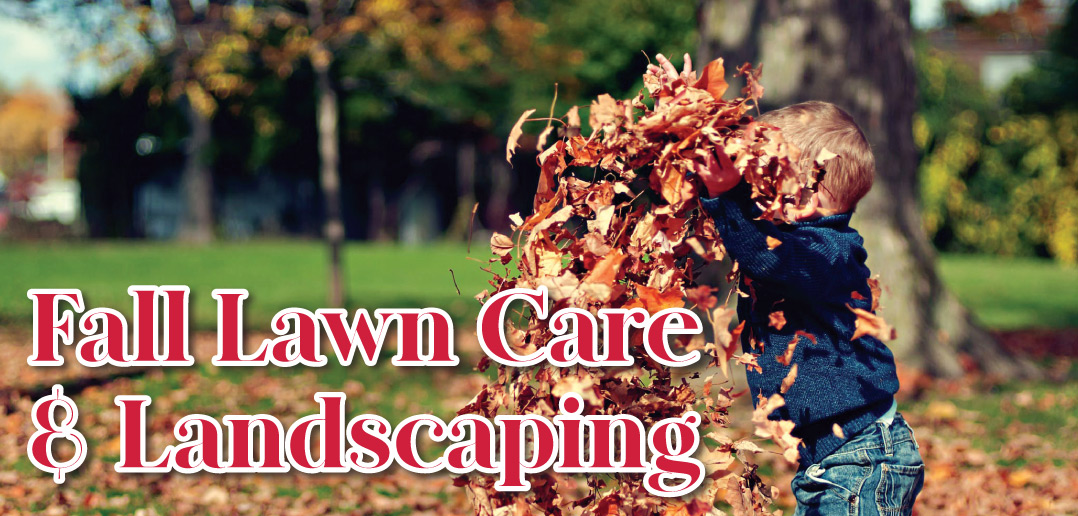 Fall Lawn Care Amp Landscaping In Lincoln Ne 2019